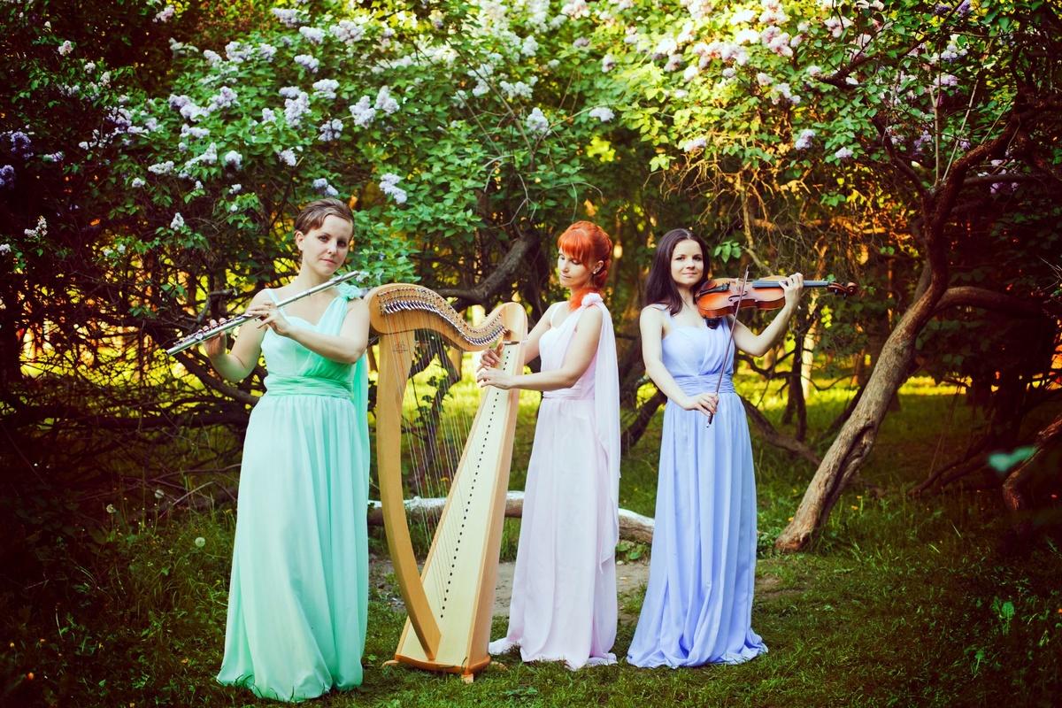 Música Boda Celta